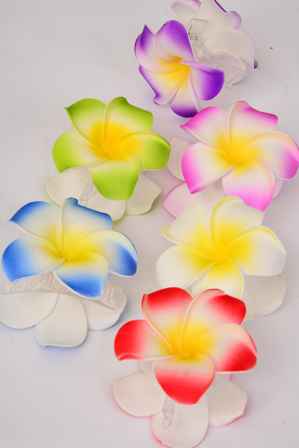 "Jaw Clip Aloha Flowers Pastel/DZ **Pastel** Flower Size-3"",2 of each Color Asst,Hang Tag & UPC Code,Clear Box"