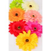 "Flower Daisy Jumbo Multi Life Like Alligator Clip/DZ **Multi** Size-6"" Wide,Alligator Clip & Brooch & Elastic Pony,2 Red,2 Fuchsia,2 Peach,2 Yellow,2 Beige,1 Orange,1 Lime,7 Color Asst."