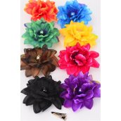 "Silk Flower Large Center 16 mm Pearl Alligator Clip/DZ Size-5"" Wide,Alligator Clip & Elastic Pony & Brooch,2 Black,2 Burgundy,2 Purple,2 Brown,1 Orange,1 Green,1 Blue,1 Yellow,8 Color Asst"