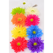 "Silk Flower Daisy Flower Alligator Clip & Brooch & Elastic/DZ Size-6"" Wide,Alligator Clip & Brooch & Elastic Pony,2 Fuchsia,2 Beige,2 Orange,1 Red,1 Purple,1 Yellow,1 White,1 Blue,1 Lime,9 Color Asst"