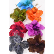 "Silk Flower Large Fancy Feathers Alligator clip/dz Size-5.5"" Wide,Alligator Clip & Elastic Pony & Brooch,2 BRown,2 Orange,2 Purple,2 Blue,1 Olive,1 Black,7 Color Asst,"