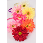 "Headband Gerber Daisy Flower Life Like/DZ Flower-4.5"" Wide,2 Fuchsia,2 Pink,2 Beige,2 Yellow,2 Orange,1 Purple,1 Red,7 Color Asst,Hang Tag & UPC Code,W Clear Box -"
